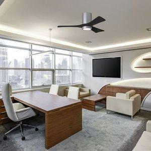 irene ventilateur au plafond avec télécommande silencieux atlas fan